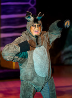 Shrek The Musical - Riverton Arts Council - April 2014